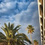 Innenhof mit Palmen